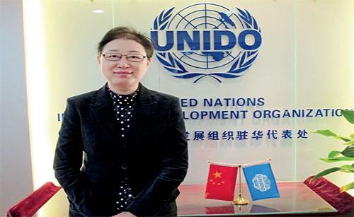 联合国工发组织代表梁丹介绍新丝绸之路的计划