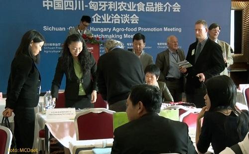 四川省农业厅副厅长张强被采访