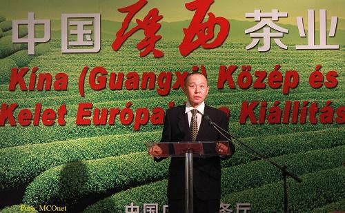 郭异介绍中国茶文化
